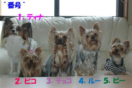 0805blog2.jpg