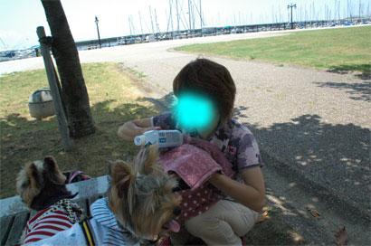 DSC_3293blog.jpg
