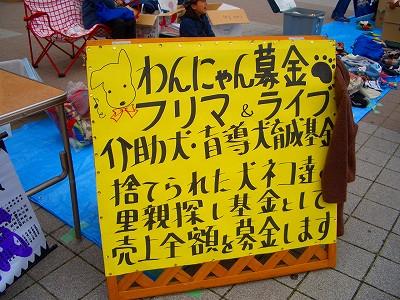 d-aisuCIMG4525.jpg
