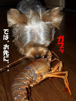 tsuyablog-CIMG6598.jpg
