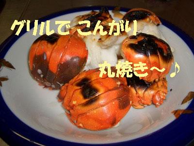 tsuyablog-CIMG6603.jpg