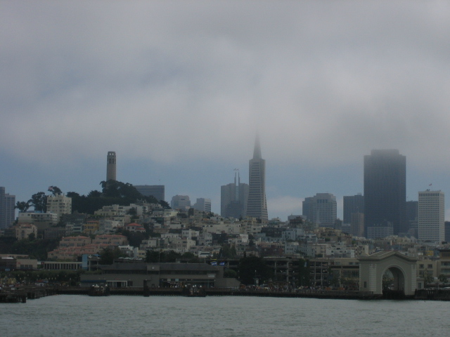 from the bay