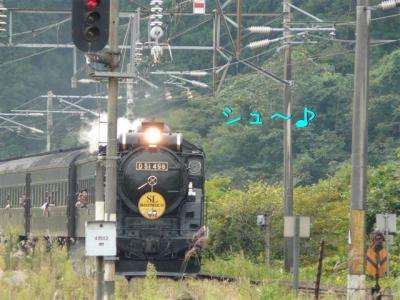 9Rm3BScP.jpg
