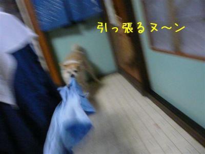 sd7UOnDH.jpg