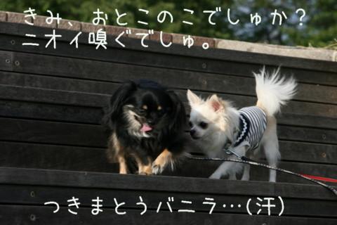 IMG_2213-001.jpg