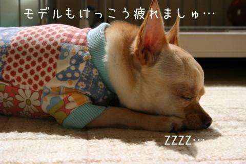 IMG_2472-001.jpg