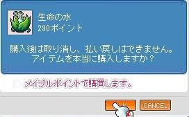 20101211008.jpg