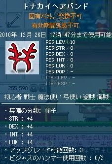 20101219008.jpg