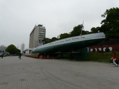 20100614-17ウラジオストク・ハバロフスク・シベリア鉄道 148