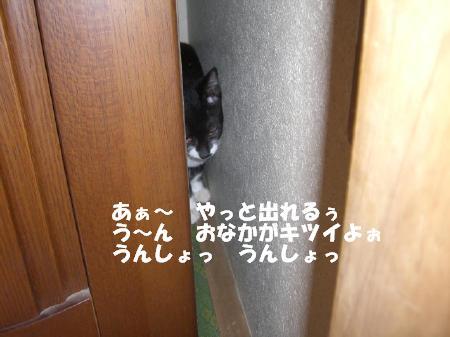 20051030133559.jpg