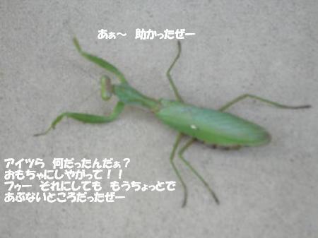 20051105124452.jpg
