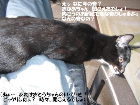 20051105150852.jpg