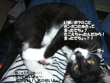 20051112133252.jpg