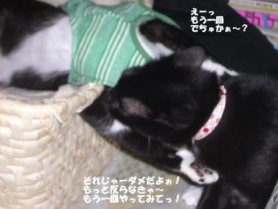 20060510.jpg