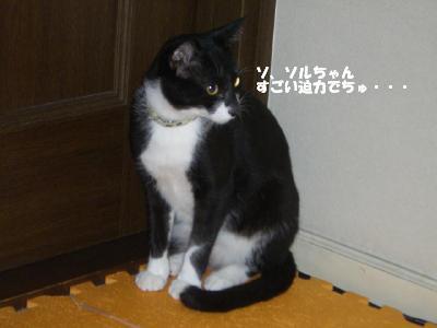 20060524.jpg