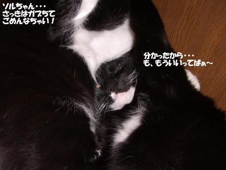 20060619.jpg