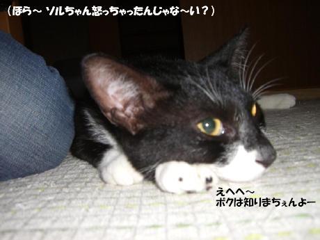 20060720.jpg