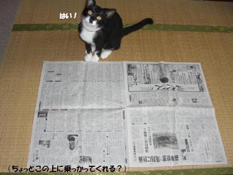 20060725.jpg