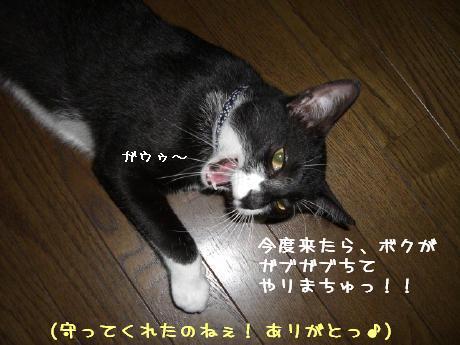 20060831.jpg