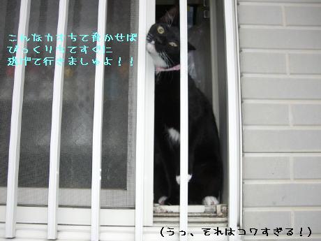 20060912.jpg