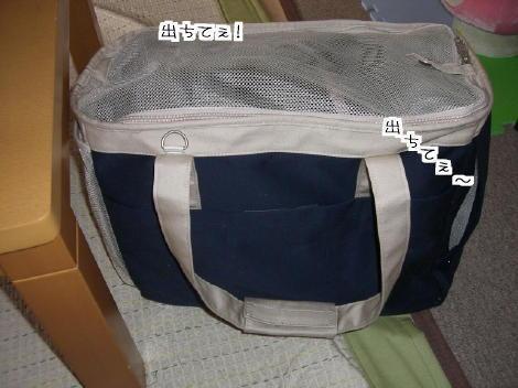 20061014.jpg