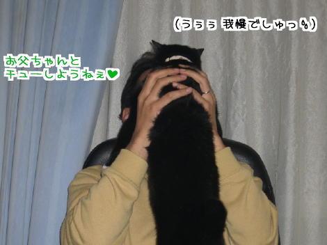 20061129.jpg
