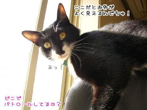 20070111.jpg