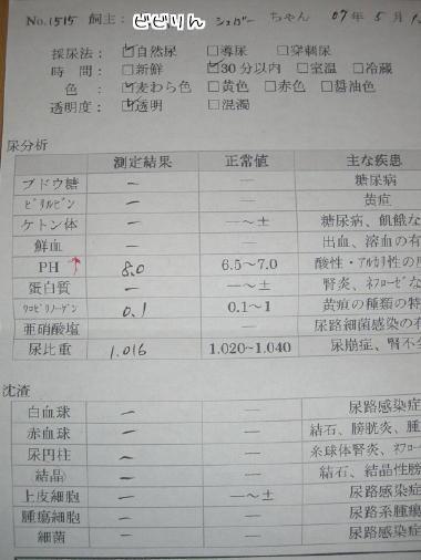 20070517.jpg