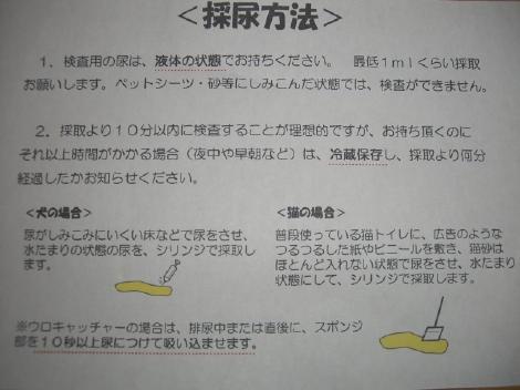 20070518.jpg