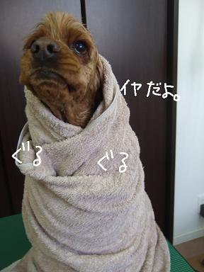 2009.01.18  なみへいくんと玉ちゃん②