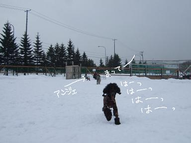 2009.02.05  DRジジ&ノイリー③