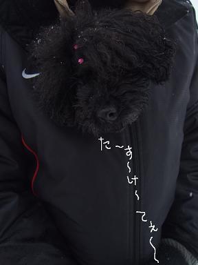 2009.02.05  DRジジ&ノイリー⑦