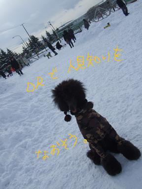 2009.02.07  グリド①