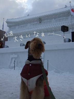 2009.02.10  札幌雪まつり③