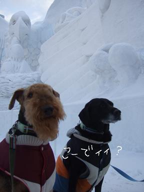 2009.02.10  札幌雪まつり⑨