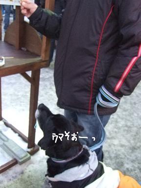 2009.02.10  札幌雪まつり⑯