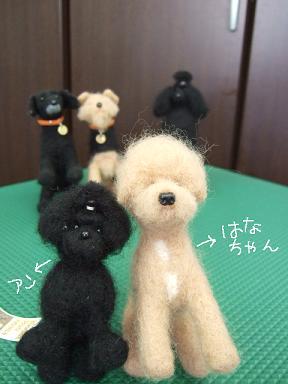 2009.02.28  はなちゃん①