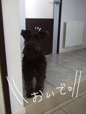 2009.03.07  ジャン&ヴィクター②