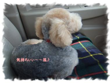 2009.05.16  ロックくん⑤