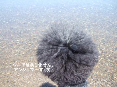 2009.05.21  支笏湖 美笛③