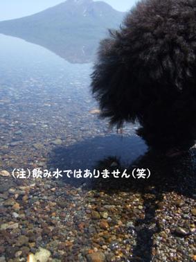 2009.05.21  支笏湖 美笛④