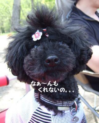 2009.05.21  支笏湖 美笛⑦
