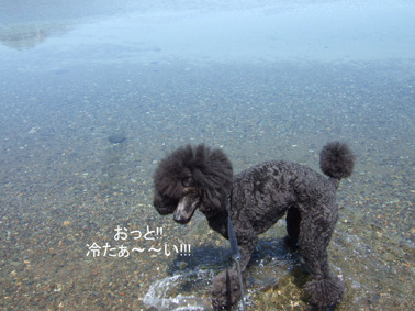 2009.05.21  支笏湖 美笛⑬