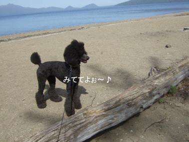 2009.05.21  支笏湖 美笛⑭