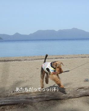 2009.05.21  支笏湖 美笛⑱