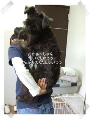 2005.05.24  ヴィクターくんとジャンくん ①