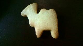 らくだクッキー