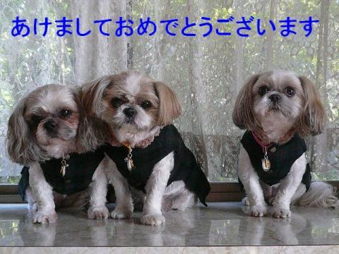 oyako_20090101_3