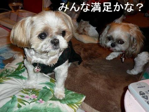 oyako_20081224_2