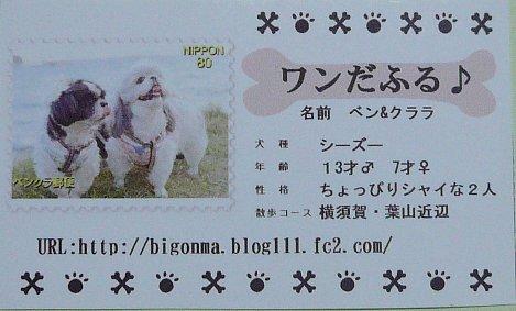 card_20081226_1